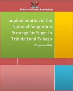 Download the Implementation of the National Adaptation Strategy for Sugar