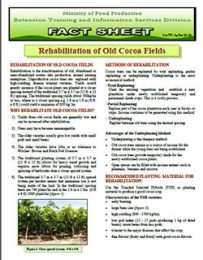 factsheet_Rehabilitation_of_old_cocoa_fileds