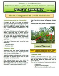 factsheet_Shade_management_in_cocoa_production