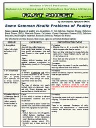 factsheet_common_health_problems_poultry