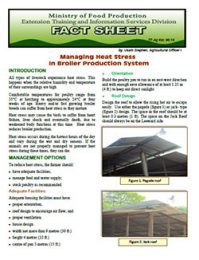 factsheet_managing_heat_stress_broiler_production
