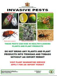 pest_alert_invasive_pests