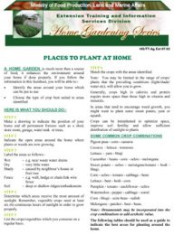 places-to-plant-at-home