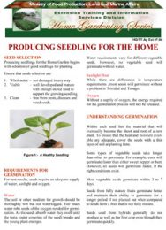 producing-seedlings-for-the-home-garden