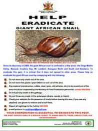 web2_9_Guidelines-Help-eradicate-GAS_Poster_Flyer