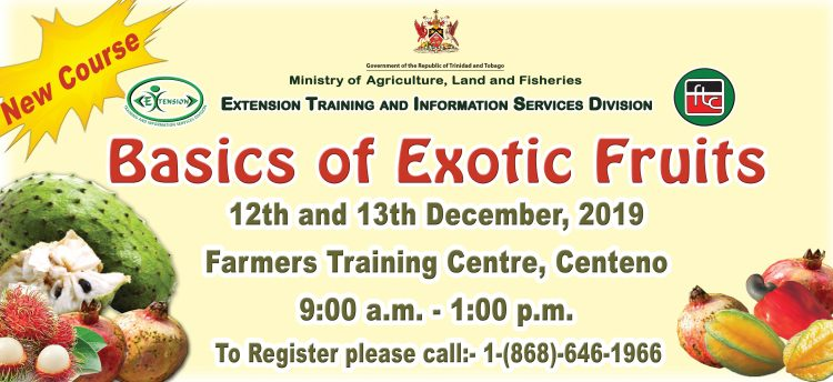 basics of exotic fruit -fB Cover banner