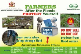 5. Protect-Yourselves-After-The-Floods-poste-2019-r47