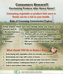 Consumers Beware. Purchasing Produce After Heavy Rains-r47
