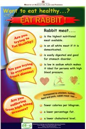 Eat-Healthy-Eat-Rabbit_compressed-r47