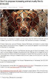 govt-increasing-animal-cruelty-fine