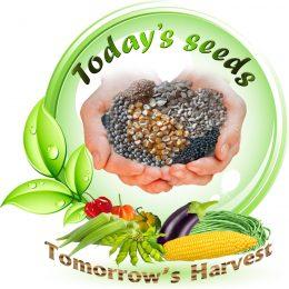 seed initiative