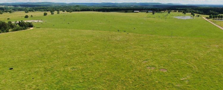 Land Management Divsion Image