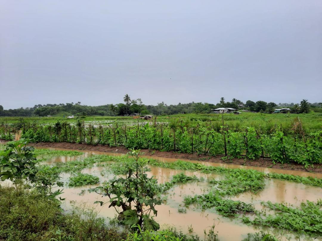 Flood 3 (Poodai Lagoon)